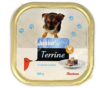Auchan Comida húmeda para perros junior, rica en aves y arroz 300 gr
