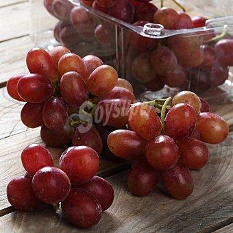 Carrefour Uva roja sin pepitas Tarrina de 500 g
