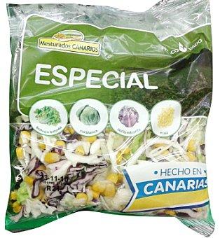 Ensalada especial ( lechuga batavia col blanca col lombarda maiz) Bolsa 200 g