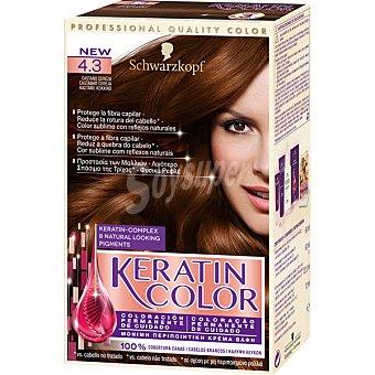 Keratin Color Schwarzkopf Tinte nº 4.3 castaño cereza coloración permanente de cuidado caja 1 unidad Caja 1 unidad
