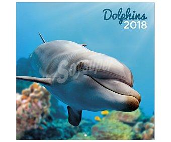 ERIK Calendario 2018 con medidas de 30x30 centímetros de delfines, ERIK.