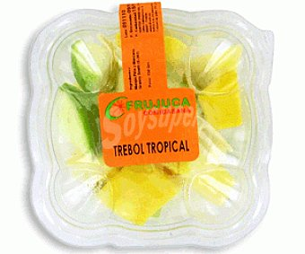 Frujuca Trébol Tropical 150g