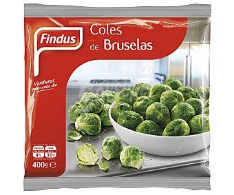 Findus Coles de Bruselas Bolsa 400 g