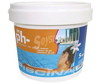 Pqs Minorador de pH granulado, ideal para bajar y estabilizar el pH del agua de nuestra piscina, además de no tener acciones corrosivas 5 Kilogramos