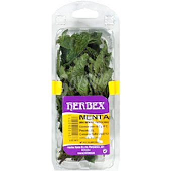 Herbex Menta Bandeja 20 g