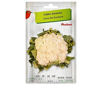 Producto Alcampo Sobre de semillas para sembrar coliflor de la variedad Dominant alcampo