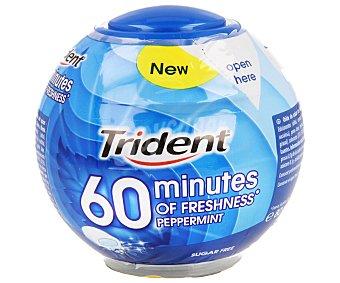 Trident Chicles sabor a menta (sin azúcar con edulcorantes) 80 gramos