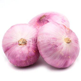 Cebolla roja del País Vasco 1 kg