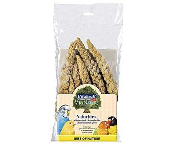 Vitakraft Alimento para aves, espigas de mijo Paquete 100 g