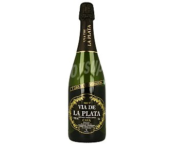 Via de la Plata Cava brut Botella de 75 cl