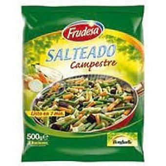 Frudesa Salteado campestre Bolsa 500 g
