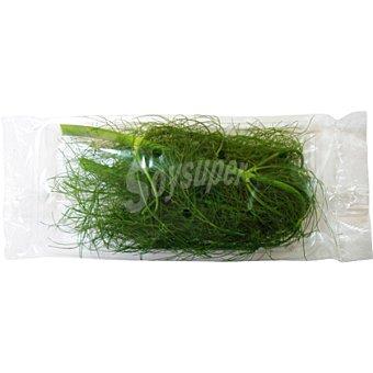 Agroilla Hinojo fresco Estuche 40 g