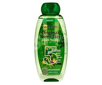Garnier Champú vitalidad con 5 plantas (té verde, limón, eucalipto, ortiga y verbena) para cabello normal deslumbrante de salud 400 mililitros