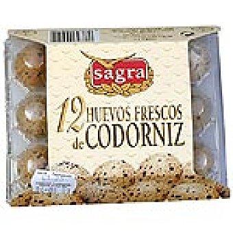 Coren Huevos de codorniz frescos Estuche 1 docena