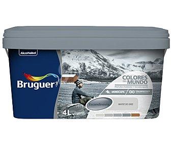 Bruguer Pintura plástica monocapa de interior, de color gris Escandinavia, de la serie Colores del mundo 4 lltros