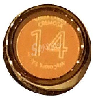DELIPLUS BARRA LABIOS MATE Nº 14 CALDERA 1 u