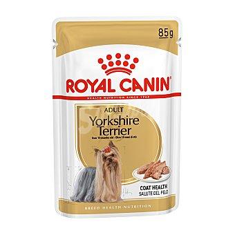 Royal Canin Comida húmeda para perros adultos Yorkshire Terrier Bolsa 85 g