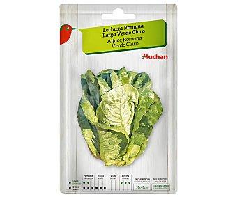 Producto Alcampo Sobre de semillas para sembrar lechugas de la variedad Romana de hoja larga de color verde claro