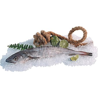 Costa Pescadilla fina fresca Unidad 300 g (peso aprox)