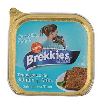 Brekkies Affinity Paté con salmón y atún para gatos Cat Chow Tarrina de 100 g