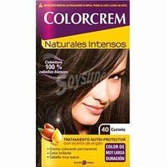 Colorcrem Tinte castaño N.40 Caja 1 unid