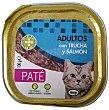 Comida gato adultos pate trucha salmon Tarrina 100 g Lucy