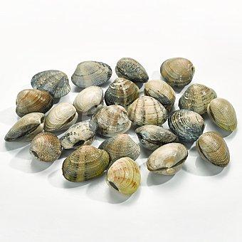 Almeja japónica pequeña especial marinera 100 gramos