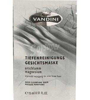 Aldo Vandini Mascarilla limpieza lodo y liquen 1 ud
