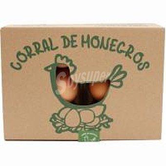Monegros Huevo campero Caja 1 docena