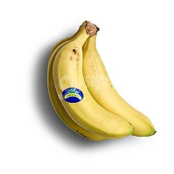 Plátano de Canarias Platano 1.2 kg aprox.