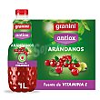 Néctar de arándano y uva Antiox 1 l Granini