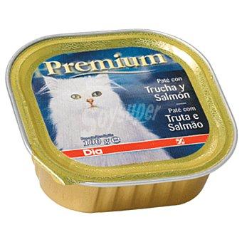 DIA Alimento  para gatos pate pollo pavo tarrina 100 gr
