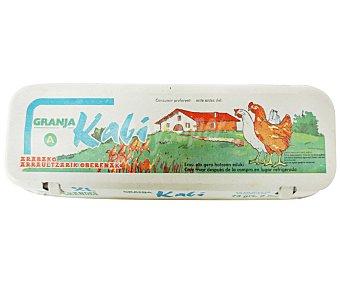 KABI Huevos Clase XL 12 Unidades