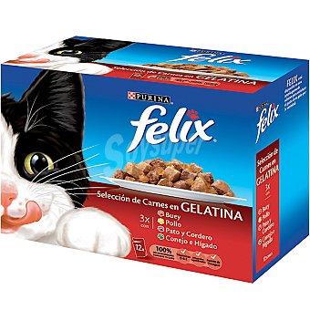 Felix Purina Selecciones de carnes y pescado en gelatina Fantastic 12 bolsas de 100 g