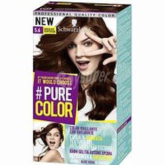 Pure color Tinte 5.6 caja 1 unid