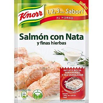Knorr Sazonador de salmón con nata y finas hierbas Sobre 28 g