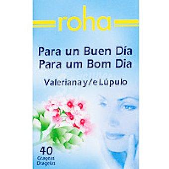 ROHA Valeriana Lupulo en grageas Bote 40 unid