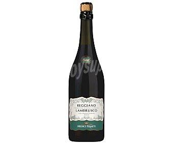 Medici Vino tinto lambrusco, frizzante seco, con denominación de origen Reggiano ermiti Botella 75 cl