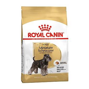 Royal Canin Schnauzer miniature adult pienso para perros adultos de raza Schnauzer Miniatura +10 meses Bolsa 3 kg
