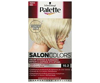 Palette Schwarzkopf Tinte Rubio muy Claro Ceniza Nº 10.2 Salon Colors 1u