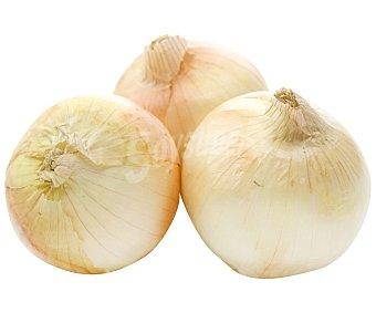 Cebolla 2kg