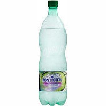 Fontecelta Agua mineral con gas Botella 1,25 litros