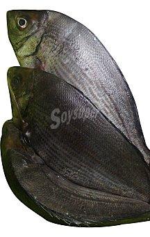 Chepa fresca entera (preparado: limpio, destripado con cabeza) Unidad 500 gr
