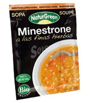 Naturgreen Sopa Minestrone Finas Hierbas Ecológica Sobre 40 gr