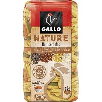 Gallo Nature multicereales chía, trigo sarraceno, maíz y arroz paquete 400 g paquete 400 g