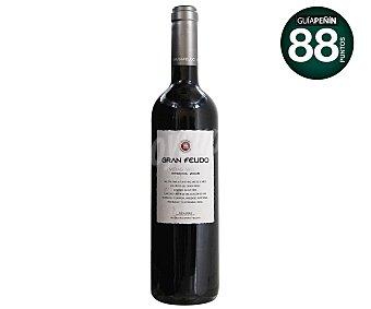 GRAN FEUDO VIÑAS VIEJAS Vino tinto reserva D.O. Navarra Botella 75 cl