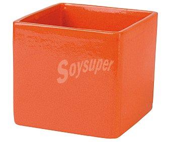 VAN Maceta cerámica cuadrada modelo Wika Meem, lisa y de color naranja 1 Unidad