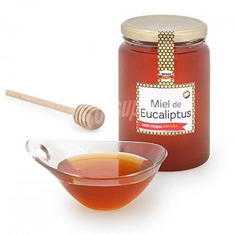 Primo Miel artesana de eucaliptus monofloral Mendoza 1 kg
