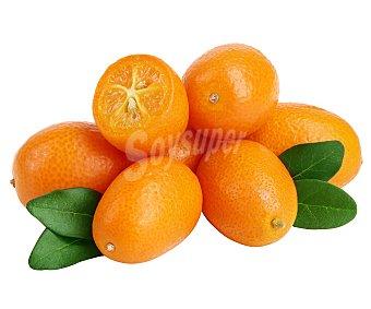 Kumquat Bandeja de 300 gramos