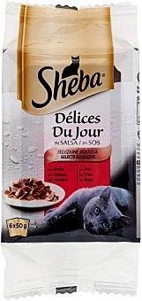 Sheba Delice Jour de pollo en salsa para gato Pack 6 x 50 g